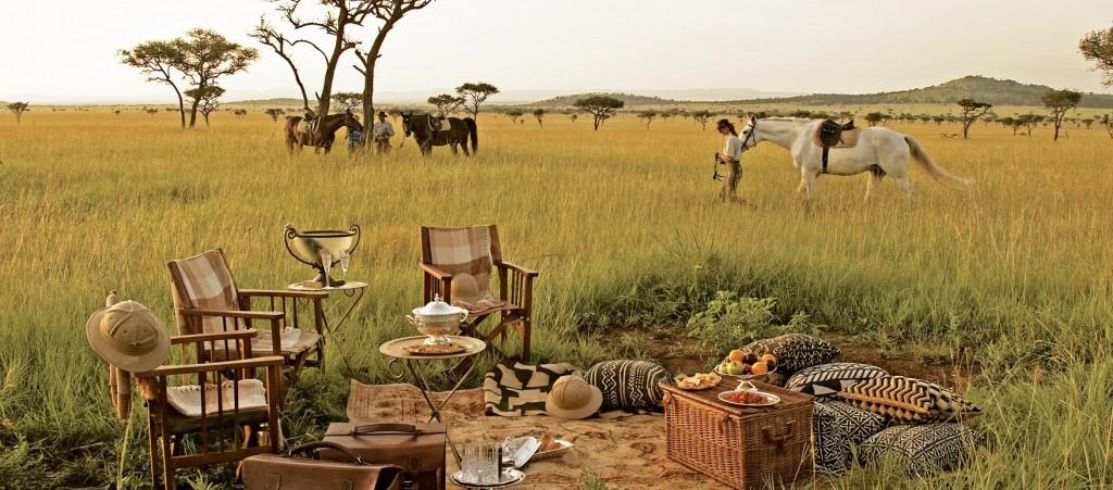Dîner privé dans le Bush Tanzanie - Evenementiel d'exception